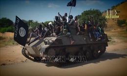 Cameroon: Hàng trăm tay súng Boko Haram ra đầu hàng trong năm 2019