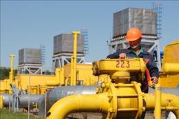 Nga - Ukraine ký thỏa thuận vận chuyển khí đốt
