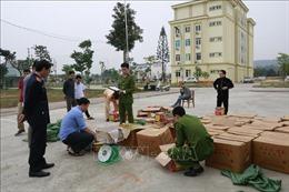 Bắt giữ vụ vận chuyển pháo nổlớn nhất từ trước đến nay tại Yên Bái