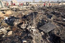 Đức được đề nghị hỗ trợ truy tố các thủ phạm bắn rơi máy bay Ukraine tại Iran