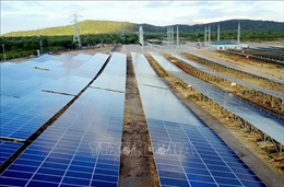 Đẩy nhanh tiến độ các dự án giải tỏa công suất nguồn năng lượng tái tạo