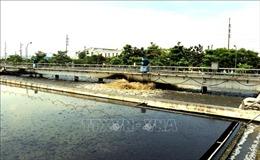 Ô nhiễm môi trường nước và công nghệ xử lý - Bài cuối: Hiện trạng xử lý các nguồn nước thải