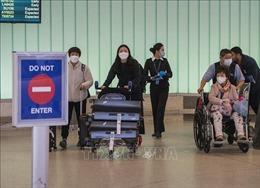 Mỹ xem xét hạn chế đi lại trong nước nhằm đối phó dịchCOVID-19