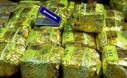 Truy nã đối tượng đặc biệt nguy hiểm vận chuyển gần 250 kg ma túy đá