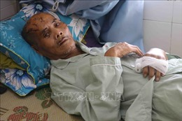 Điều tra vụ cụ ông ở Phú Yên bị người thân hành hung phải nhập viện