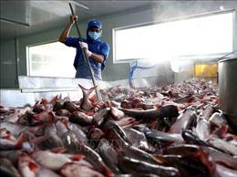 Tháo gỡ khó khăn cho thuỷ sản xuất khẩu sang Campuchia