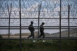 Bộ Tư lệnh Liên hợp quốc điều tra vụ nổ súng ở biên giới giữa hai miền Triều Tiên