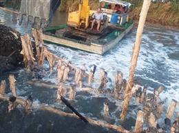 Cà Mau khắc phục xong sự cố vỡ đập khiến nước mặn tràn vào nội đồng
