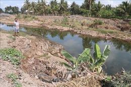 Kênh mương nội đồng Dự án ngọt hóa Gò Công bị sạt lở nghiêm trọng