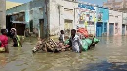 Liên hợp quốc cảnh báo dịch bệnh bùng phát do lũ lụt ở Somalia