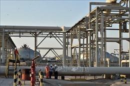 Giá dầu thế giới đi lên tuần thứ tư liên tiếp