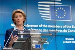 Hóc búa bài toán phục hồi của EU
