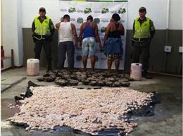 Colombia bắt giữ 50 đối tượng buôn bán trái phép động vật hoang dã