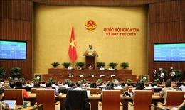 Tận dụng lợi thế, nâng cao năng lực cạnh tranh của doanh nghiệp Việt Nam