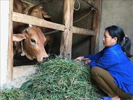 Tín dụng chính sách góp phần thay đổi bộ mặt nông thôn mới