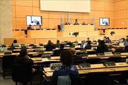 Khóa họp lần thứ 43 của Hội đồng Nhân quyền Liên hợp quốc họp trở lại