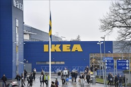 Hãng Ikea trả lại số tiền trợ cấp nhận được từ Mỹ và 8 nước châu Âu