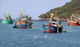Khắc phục 'thẻ vàng'IUU: Xử lý triệt để các trường hợp khai thác hải sản trái phép