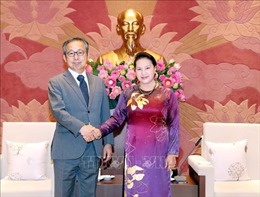 Đại sứ Yamada Takio: Nhật Bản sẵn sàng nối lại hợp tác lao động với Việt Nam
