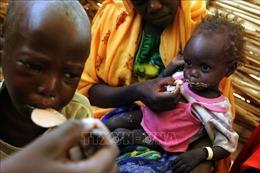 Gần 1/4 dân số Sudan đang phải đối mặt với tình trạng thiếu đói