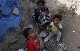 Báo động tình trạng mất an ninh lương thực ở Yemen