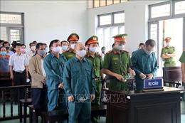 Tuyên án vụ vi phạm quản lý đất đai tại thành phố Phan Thiết