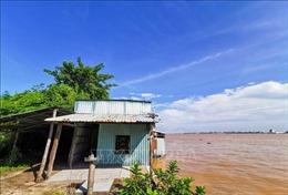 Sạt lở hơn 1 ha đất mỗi năm ở cù lao Tân Lộc