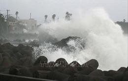 Bão Maysak gây thiệt hại nghiêm trọng tại Nhật Bản, Trung Quốc