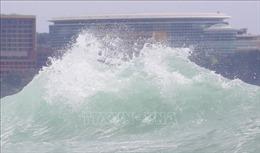 Hàn Quốc nâng cảnh báo lên mức cao nhất đề phòng bão Haishen