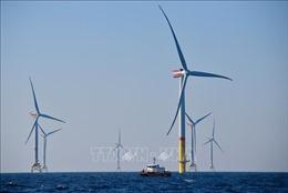 BP dự báo nhu cầu năng lượng tái tạo tăng đột biến tới năm 2050