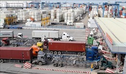 Hợp tác triển khai đề án giảm ùn tắc tại cảng Cát Lái