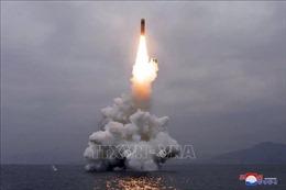38 North: Dấu hiệu Triều Tiên sắp thử tên lửa đạn đạo từ tàu ngầm
