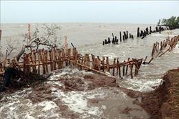 Mưa lớn kèm dông, lốc gây gây thiệt hại nặng tại Kiên Giang
