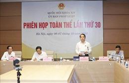 Tổ chức chính quyền đô thị tại TP Hồ Chí Minh tinh gọn, hợp lý, hoạt động hiệu quả