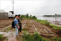 Người dân An Giang mong muốn dừng dự án nạo vét thông luồng sông Hậu