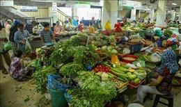 Rau xanh tại Đà Nẵng khan hiếm, tăng giá sau mưa lũ
