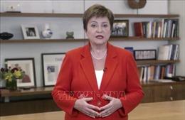 IMF kêu gọi hành động kiên quyết hơn để giải quyết vấn đề nợ