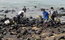 Phú Yên: Cải thiện môi trường tại danh thắng Hòn Yến