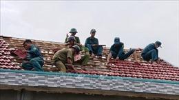 Phú Yên sớm ổn định đời sống, sản xuất của người dân