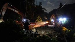 Vụ sạt lở tại Nam Trà My:Tiếp tục tìm kiếm các nạn nhân còn mất tích