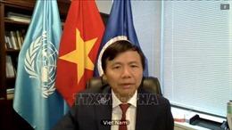 Việt Nam tái khẳng định sự ủng hộ đối với các hoạt động gìn giữ hòa bình của LHQ