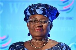 WTO hủy cuộc họp bầu tổng giám đốc kế nhiệm