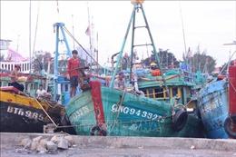 Bình Thuận: Tàu thuyền đã ra khỏi vùng nguy hiểm của bão số 12
