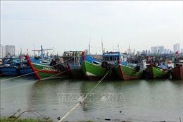 Đà Nẵng sơ tán dân ở khu vực nguy hiểm đến nơi an toàn