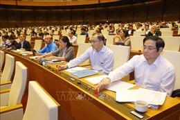 Thông qua Luật về lao động Việt Namđi làm việc ở nước ngoài