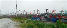 Thanh Hóa chủ động triển khai nhiều phương ánứng phó với bão số 13