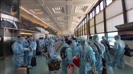 Đưa trên 340 công dân Việt Nam từ Đài Loan về nước