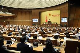 Quốc hội thảo luận về dự án Luật Bảo đảm trật tự, an toàn giao thông đường bộ