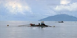 Khắc phục 'thẻ vàng'IUU: Ngăn chặn, xử lý khai thác hải sản trái phép