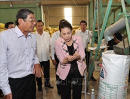 Chủ tịch Quốc hội thăm và làm việc tại tỉnh Sóc Trăng